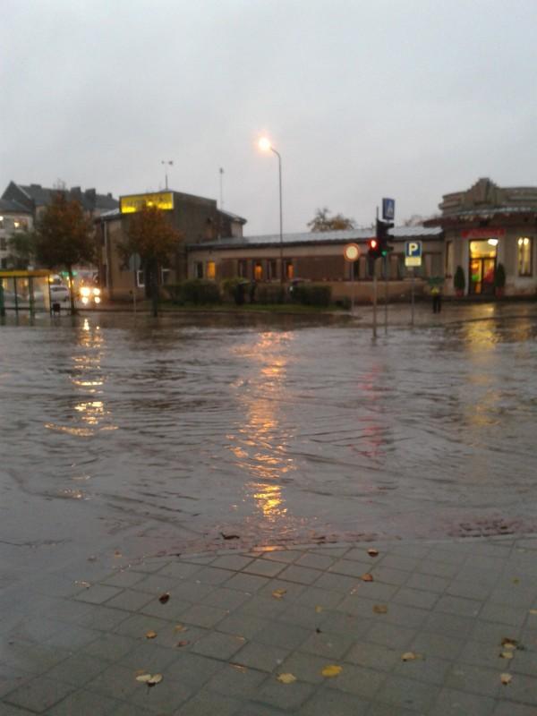 Flushed Away - Jelgava