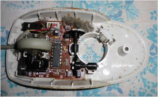 Computer Mouse from inside