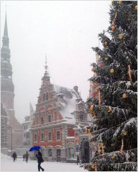 Christmas tree in Riga 2016