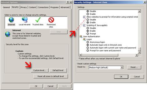 IE7 Enabling Scripted Windows